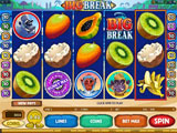 Rich Reels Online Casino - Big Break Video Slot