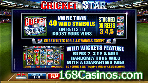 Cricket Star Slot Wild Symbols