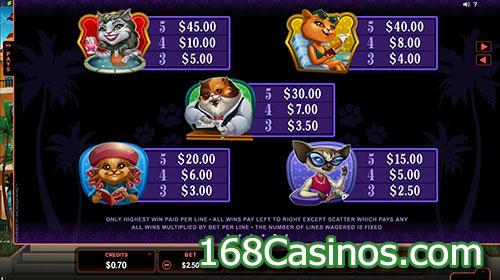 Kitty Cabana Slot Paytable