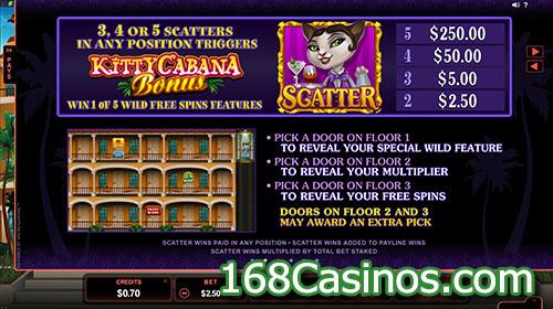 Kitty Cabana Video Slot Scatter Bonus