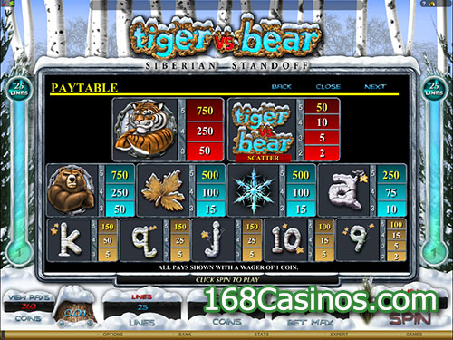 Tiger vs Bear Slot Paytable