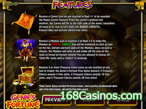 Genie's Fortune Video Slot Bonus
